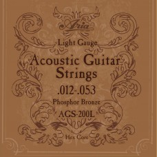 AGS 200L  For Acoustic Guitars