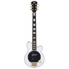 PGG 259 - Portable guitar